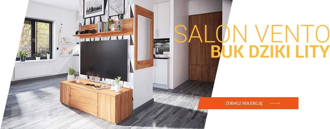 slajd_A_1100_vento_salon