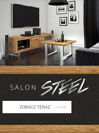 slajd_A_320_salon_steel