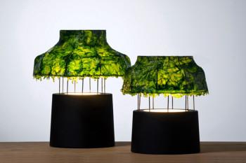 Klosz lampy wykonany z wodorostów