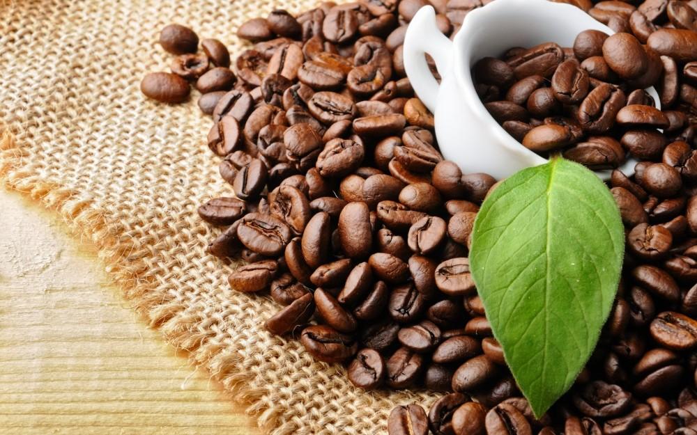 coffee-beans-237058