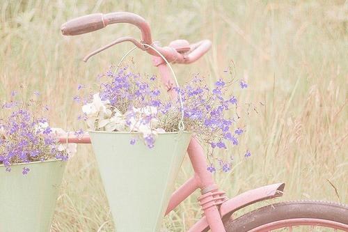madamesouffle.blogspot.com