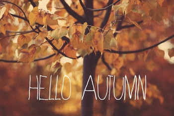 Jesień z Home&You