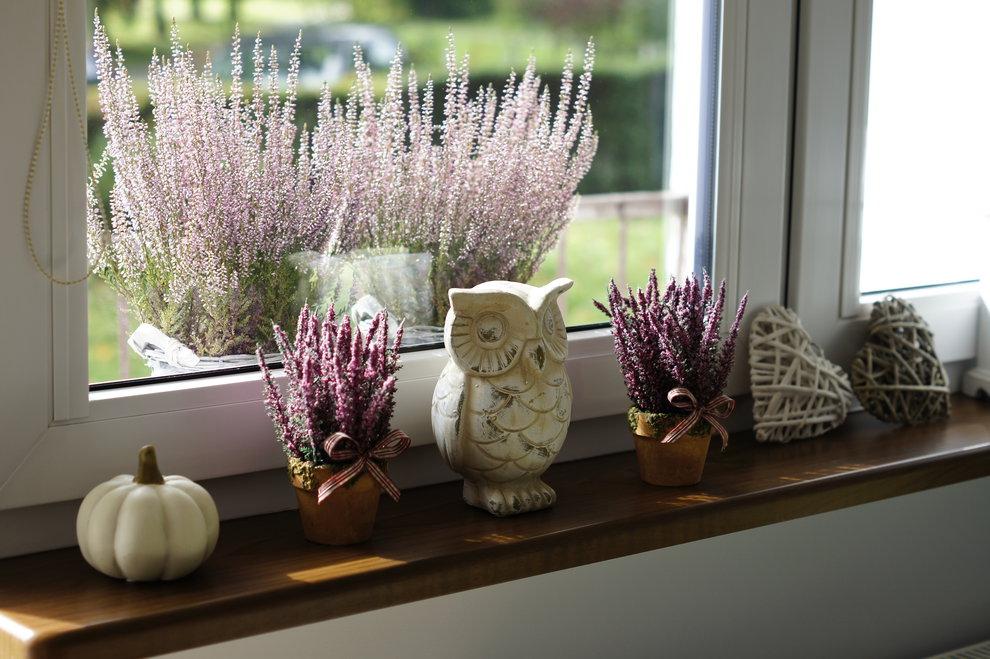 Parapet z dekoracjami z małych doniczek z fioletowym wrzosem