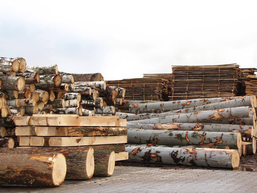 Polskie drewno na meble
