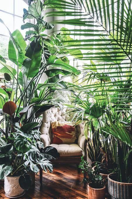 Urban jungle kącik do czytania