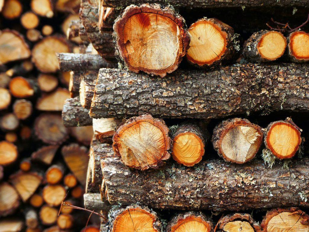 Drewno przygotowane do suszenia
