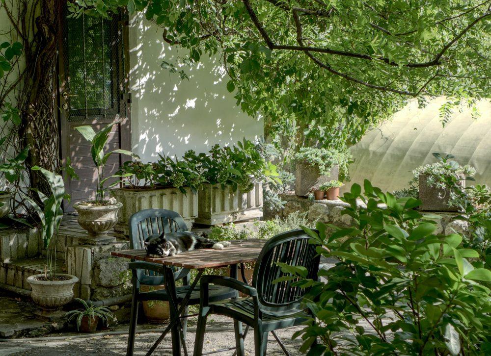 Meble ogrodowe drewniane, czyli relaks na świeżym powietrzu