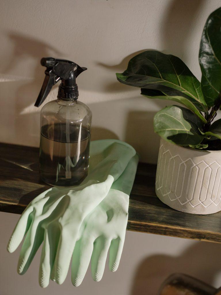 Ogródek w domu - nawadnianie