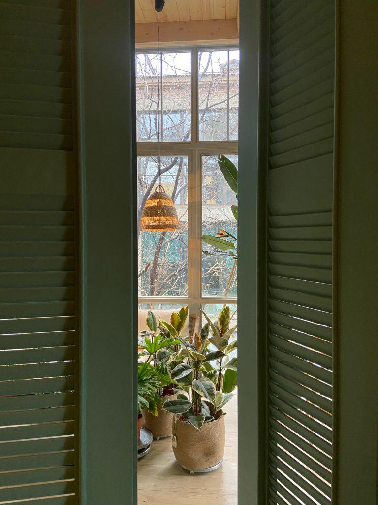 Ogród w domy - aranżacje