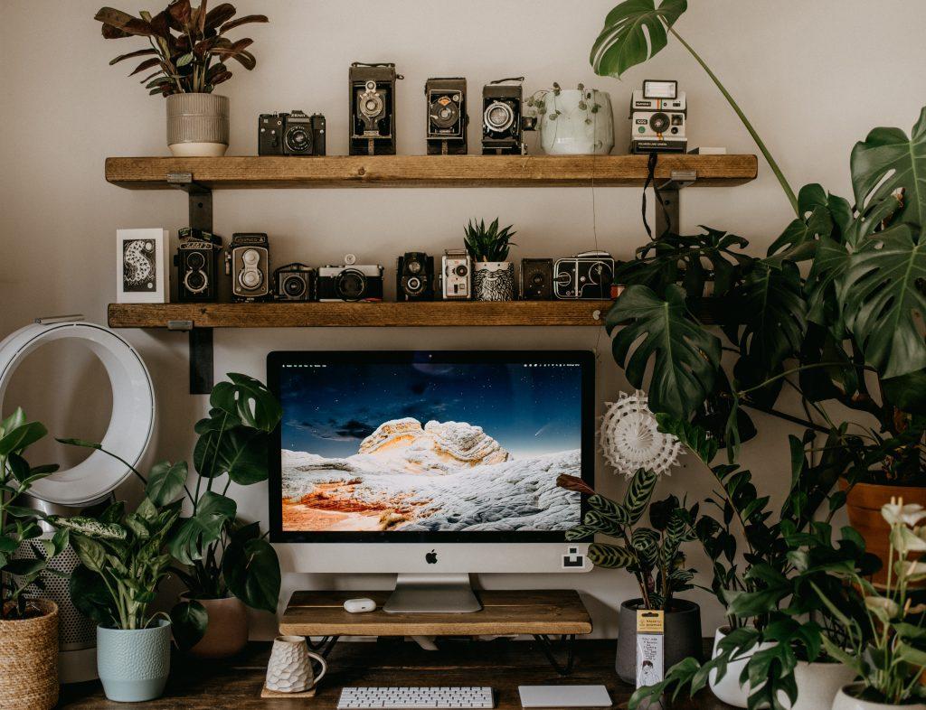 Półki, biurko i rośliny - aranżacja domowego miejsca pracy