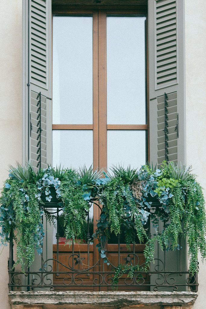 Porte-fenetre i roślinność