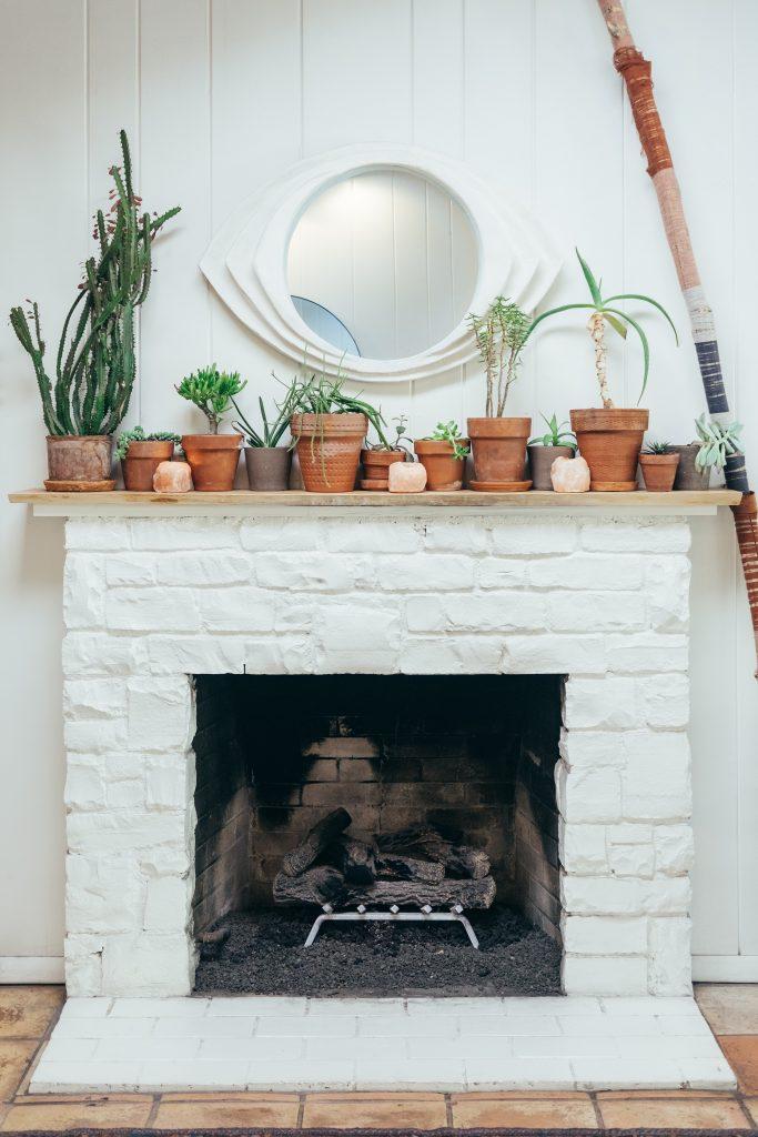 Rośiny i kominek w salonie